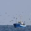 Pesquero en Guipuzcoa